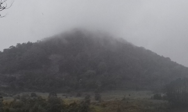 Cooroy Mountain